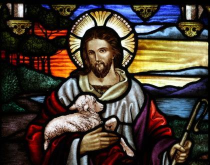 IV Niedziela Wielkanocna, rok A (07.04.2017 r.)