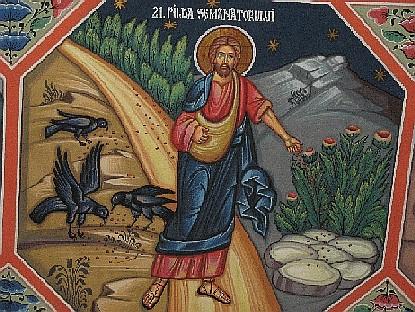 XV Niedziela Zwykłą, rok A (12.07.2020 r.)